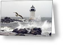 Fort Pickering Lighthouse Salem Ma Greeting Card