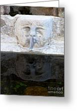 Fountain Face Greeting Card