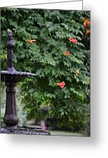 Fountain In The Garden Greeting Card