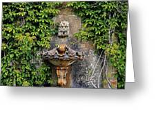 Fountain In The Walled Garden, Florence Greeting Card
