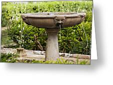 Fountain With Faces Greeting Card