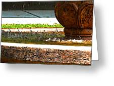 Fountain With Painted Effect Greeting Card