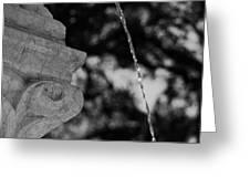 Fountain's Stream Greeting Card