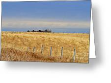 Four Outbuildings In The Field Greeting Card