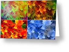 Four Seasons In Abstract Greeting Card