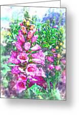 Foxglove Floral Greeting Card