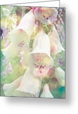 Foxgloves Greeting Card