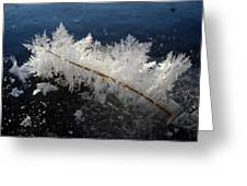 Fractal Frosty Ice Crystals Greeting Card
