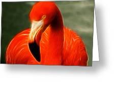 Fractalius Flamingo Greeting Card