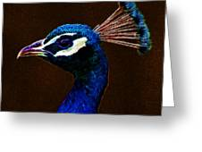 Fractalius Peacock Greeting Card