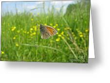 Fragile Beauty #02 Greeting Card