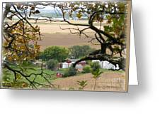 Framed By Tree Greeting Card