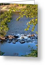 Framed Rapids Greeting Card by Robert Bales