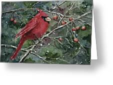 Franci's Cardinal Greeting Card