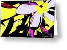 Frangipani 0856 24 Greeting Card by Nina Kaye
