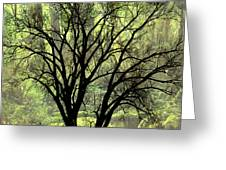 Freaky Tree 2 Greeting Card
