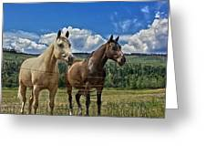 Freedom Riders Greeting Card