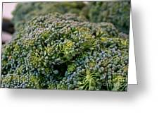 Fresh Broccoli Greeting Card by Susan Herber