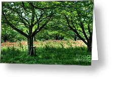 Fresh Green Time  Greeting Card