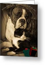 Friendship Is The Greatest Gift Of All Greeting Greeting Card