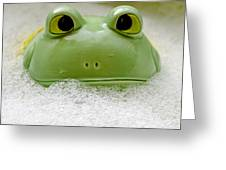 Frog In The Bath  Greeting Card