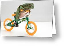 Frog On A Bicycle Greeting Card
