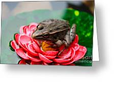 Frog On Lily Pad Two Greeting Card