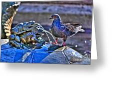 Frogs And A Pigeon Greeting Card
