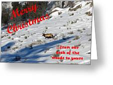 From Our Neck Of The Woods 6 Greeting Card