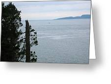 From The Bluff Greeting Card