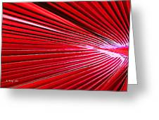 Frond Of Red Greeting Card
