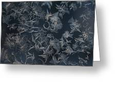 Frost Ferns Greeting Card