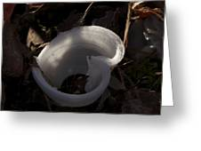 Frost Flower 5 Greeting Card