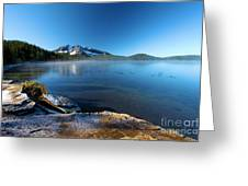 Frost On The Shore Greeting Card
