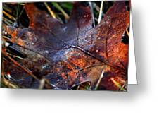 Frosted Fall Greeting Card