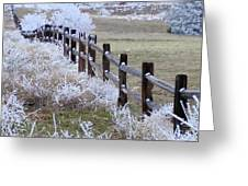 Frosted Fence Greeting Card