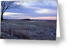 Frosty Cape May Meadow Greeting Card