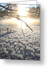 Frosty Ice At Sunrise Greeting Card