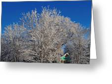 Frosty Morn Greeting Card