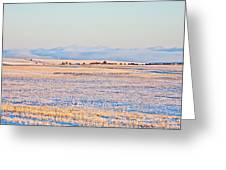 Frosty Morning 2 Greeting Card