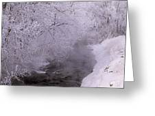 Frosty Trees And Creek Greeting Card