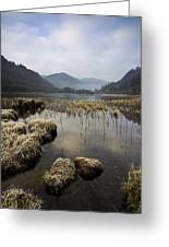 Frosty Winters Morning, Lower Lake Greeting Card