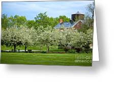 Frothy Foliage Greeting Card