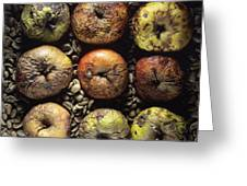 Frozen Apples Greeting Card by Bernard Jaubert