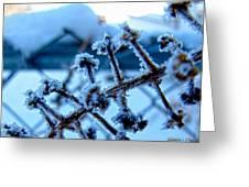 Frozen II Greeting Card
