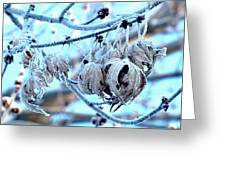 Frozen IIi Greeting Card