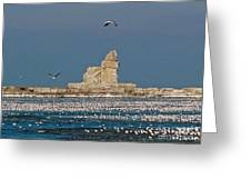 Frozen Lighthouse Greeting Card