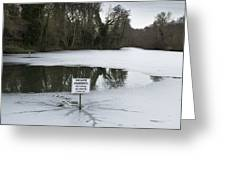 Frozen Pond No Parking Greeting Card