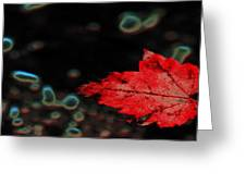Frozen Red Leaf Greeting Card