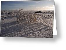 Frozen Riviere Des Mille Iles - Qc Greeting Card